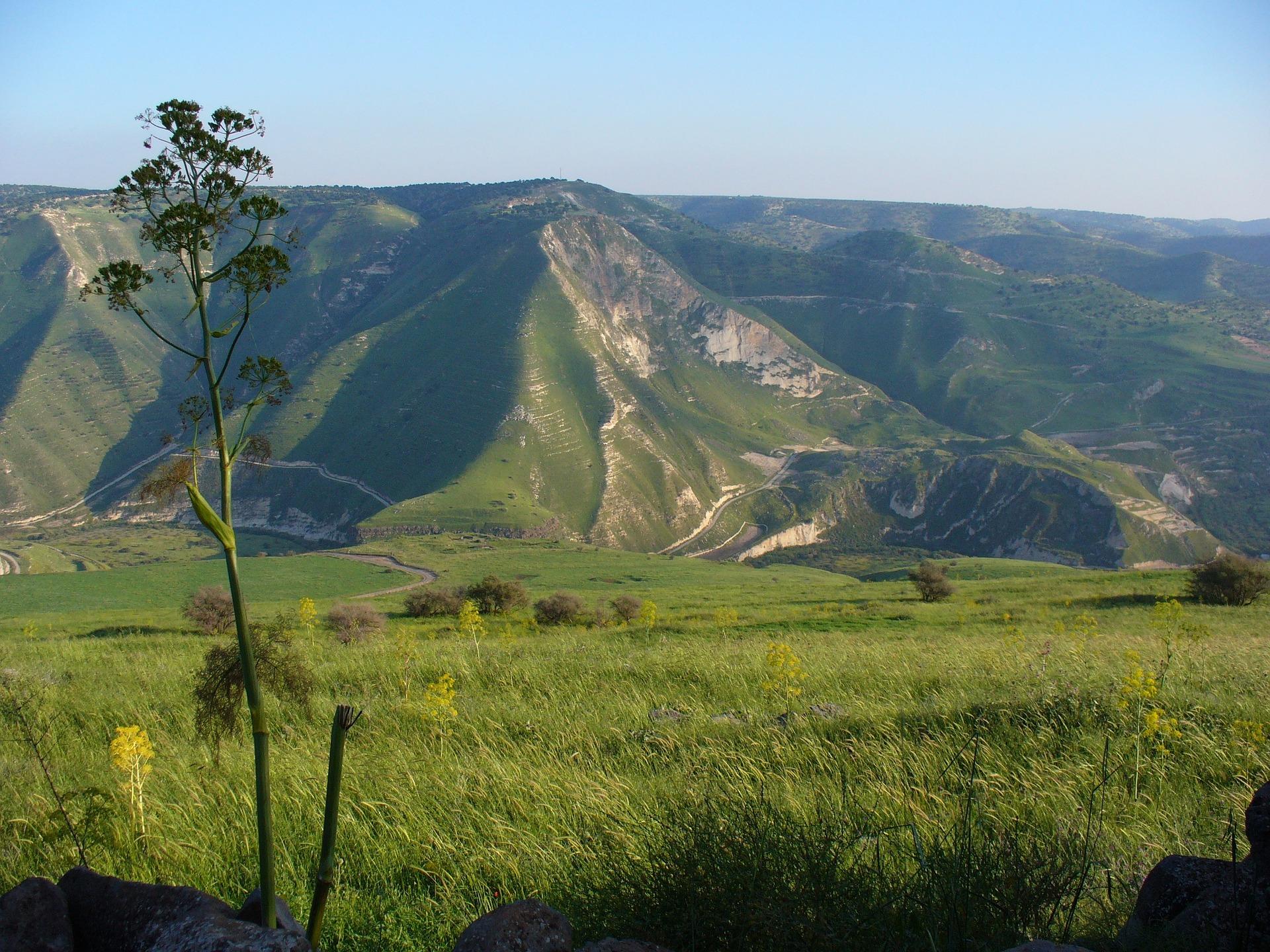 Viheriöivä Golan